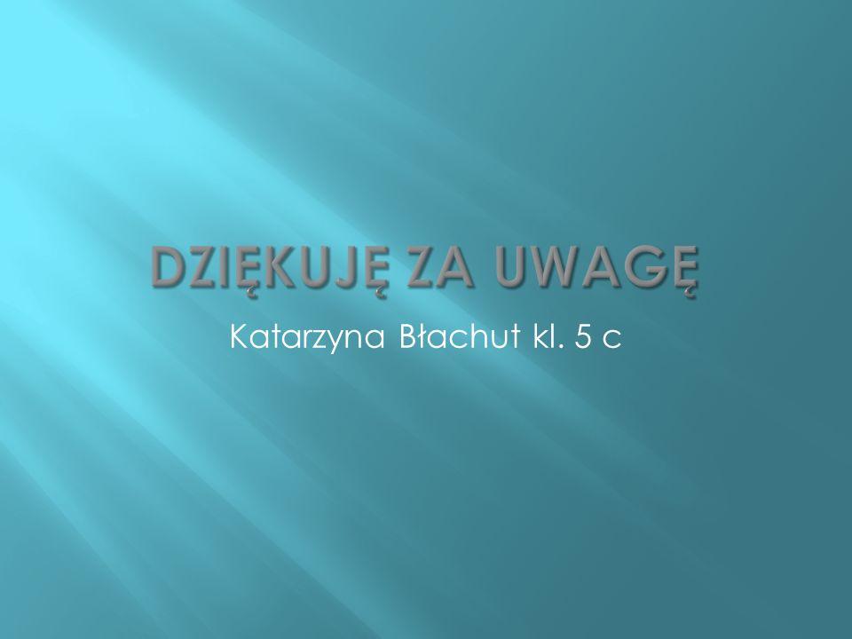 Dziękuję za uwagę Katarzyna Błachut kl. 5 c