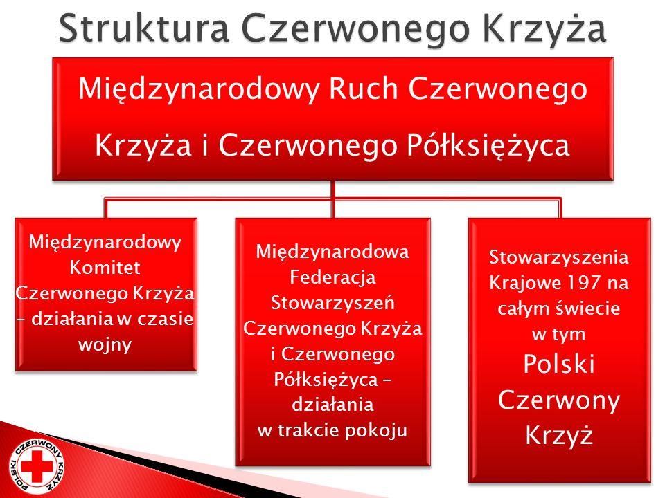 Struktura Czerwonego Krzyża