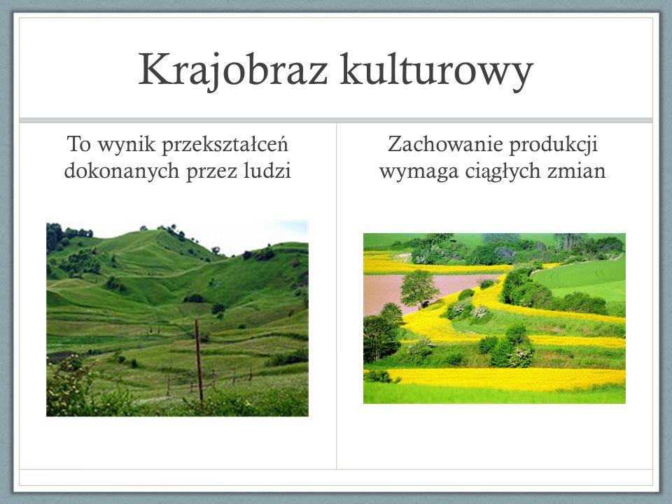 Krajobraz kulturowy To wynik przekształceń dokonanych przez ludzi