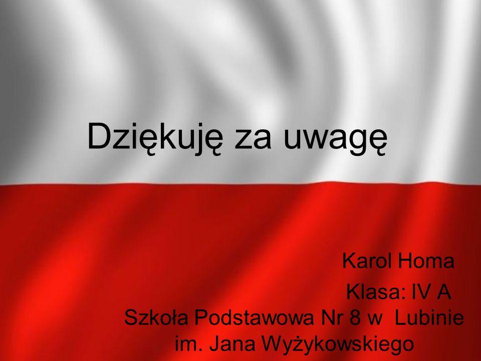 Szkoła Podstawowa Nr 8 w Lubinie im. Jana Wyżykowskiego