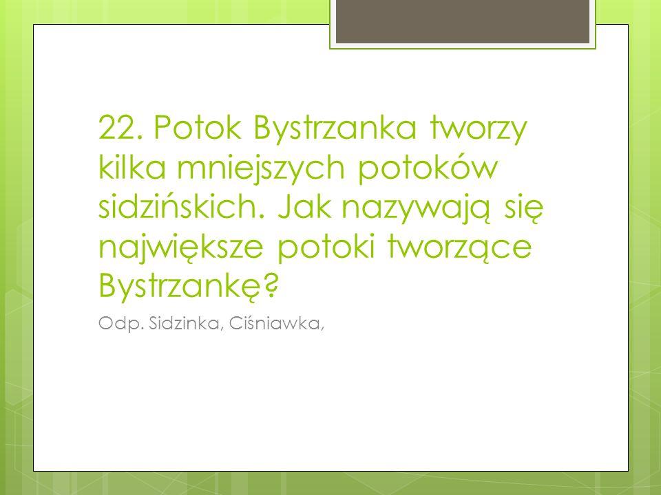 22. Potok Bystrzanka tworzy kilka mniejszych potoków sidzińskich