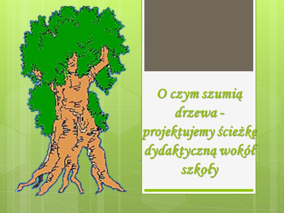 O czym szumią drzewa -projektujemy ścieżkę dydaktyczną wokół szkoły