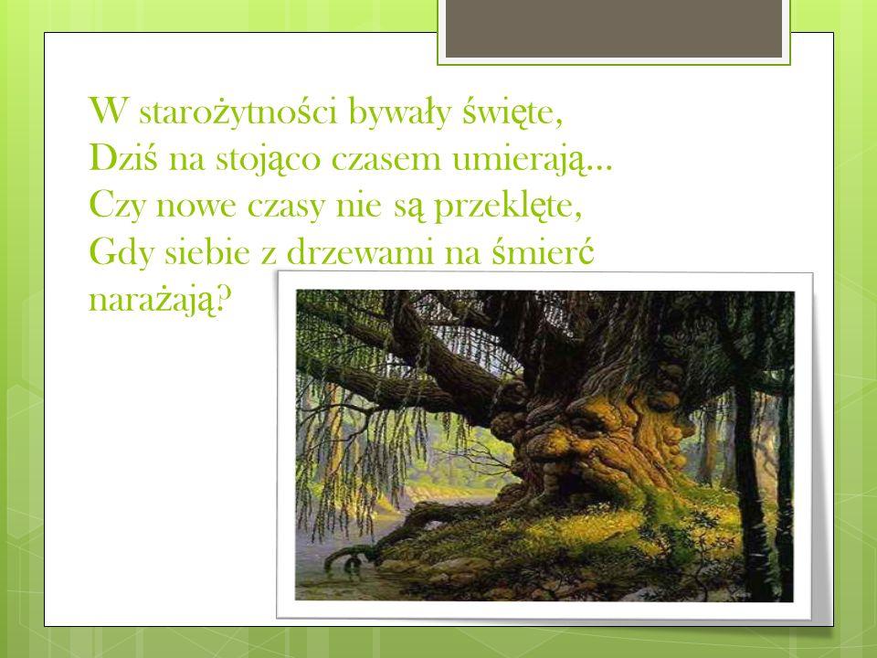 W starożytności bywały święte, Dziś na stojąco czasem umierają… Czy nowe czasy nie są przeklęte, Gdy siebie z drzewami na śmierć narażają
