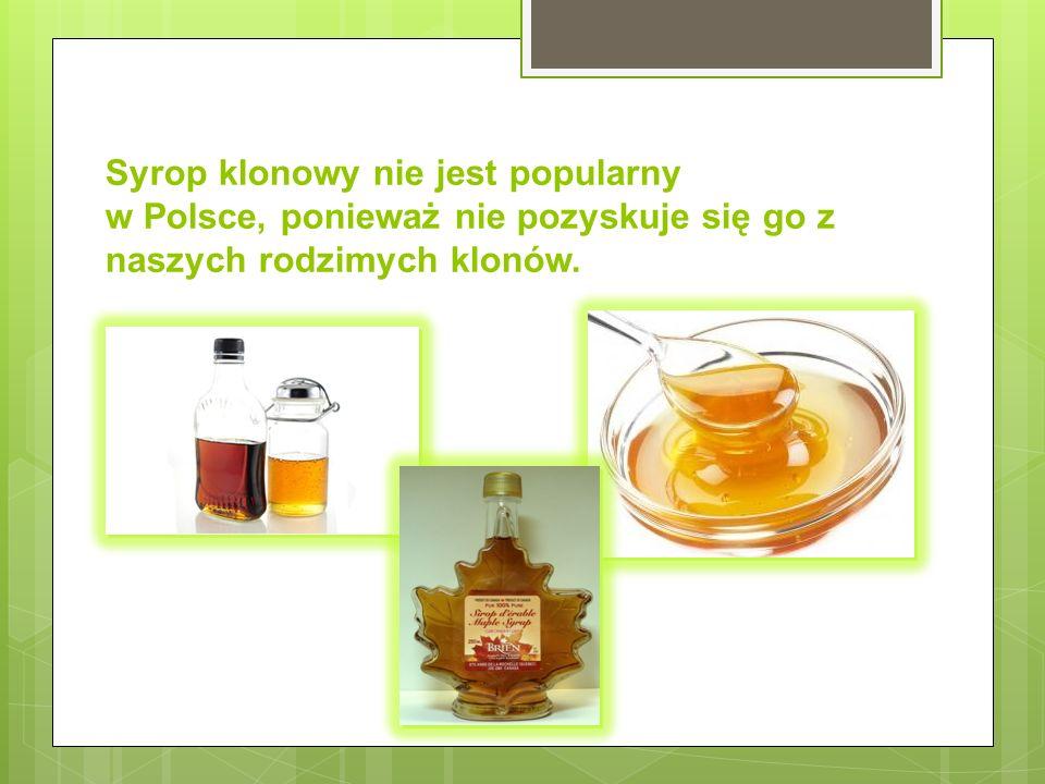 Syrop klonowy nie jest popularny w Polsce, ponieważ nie pozyskuje się go z naszych rodzimych klonów.