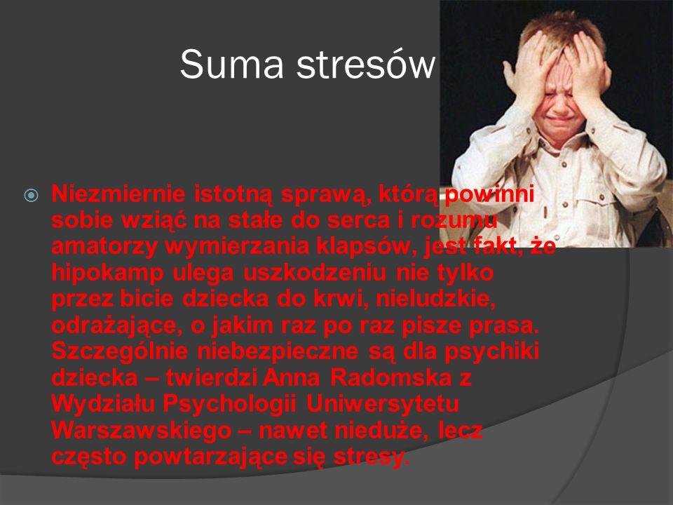Suma stresów
