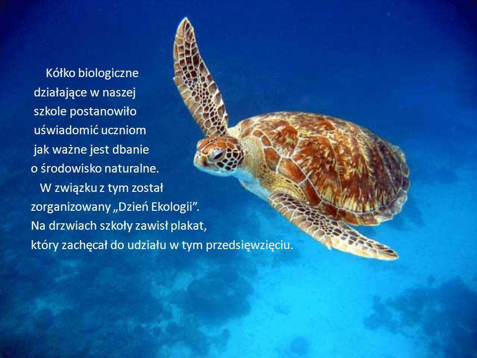 Kółko biologiczne działające w naszej szkole postanowiło uświadomić uczniom jak ważne jest dbanie o środowisko naturalne.