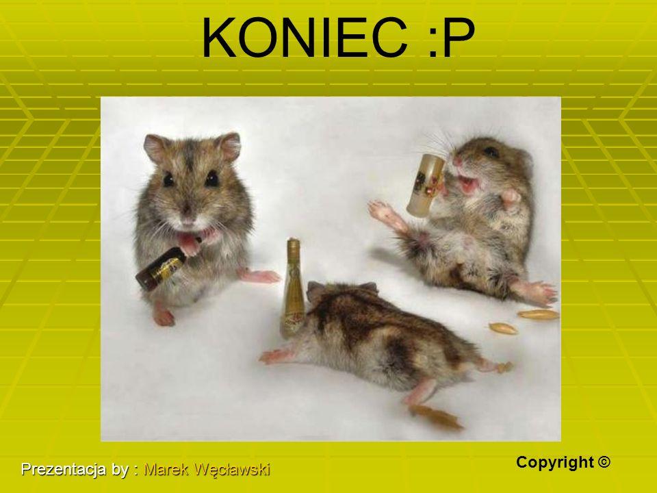 KONIEC :P Copyright © Prezentacja by : Marek Węcławski