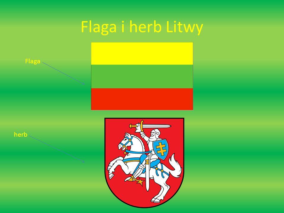 Flaga i herb Litwy Flaga herb