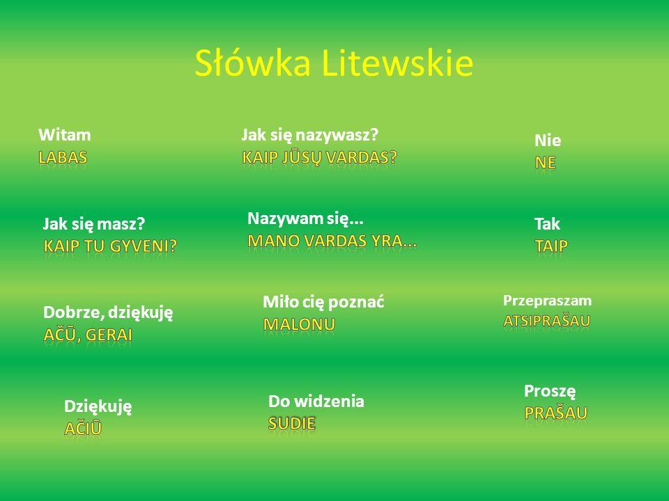 Słówka Litewskie Witam Labas Jak się nazywasz Kaip jūsų vardas