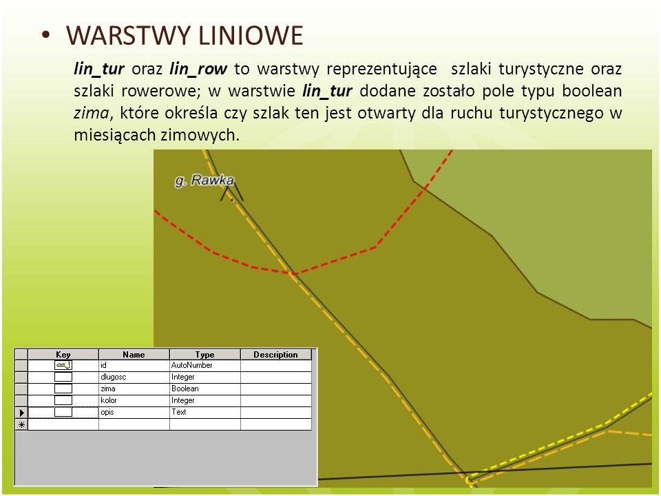 WARSTWY LINIOWE