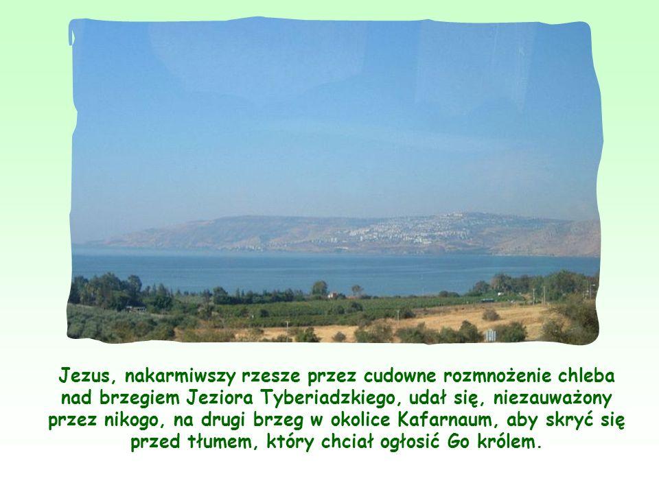 Jezus, nakarmiwszy rzesze przez cudowne rozmnożenie chleba nad brzegiem Jeziora Tyberiadzkiego, udał się, niezauważony przez nikogo, na drugi brzeg w okolice Kafarnaum, aby skryć się przed tłumem, który chciał ogłosić Go królem.