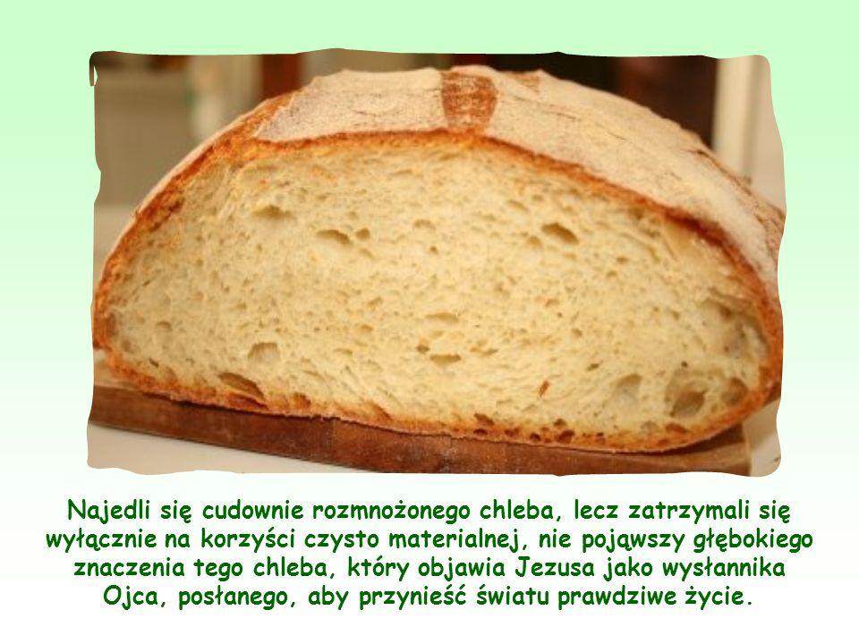 Najedli się cudownie rozmnożonego chleba, lecz zatrzymali się wyłącznie na korzyści czysto materialnej, nie pojąwszy głębokiego znaczenia tego chleba, który objawia Jezusa jako wysłannika Ojca, posłanego, aby przynieść światu prawdziwe życie.