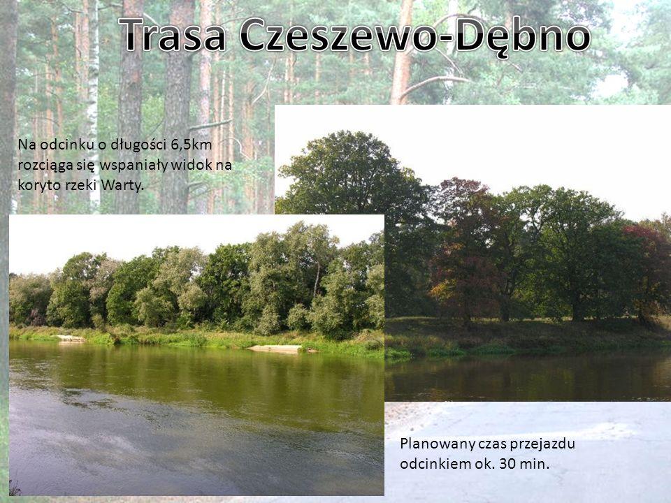 Trasa Czeszewo-Dębno Na odcinku o długości 6,5km rozciąga się wspaniały widok na koryto rzeki Warty.