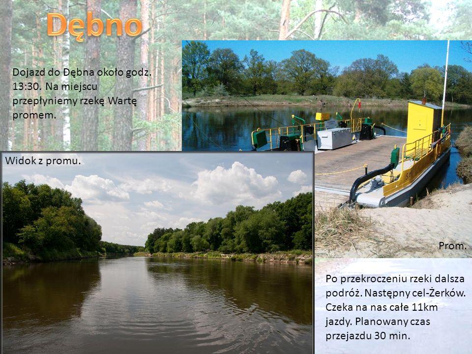 Dębno Dojazd do Dębna około godz. 13:30. Na miejscu przepłyniemy rzekę Wartę promem. Widok z promu.