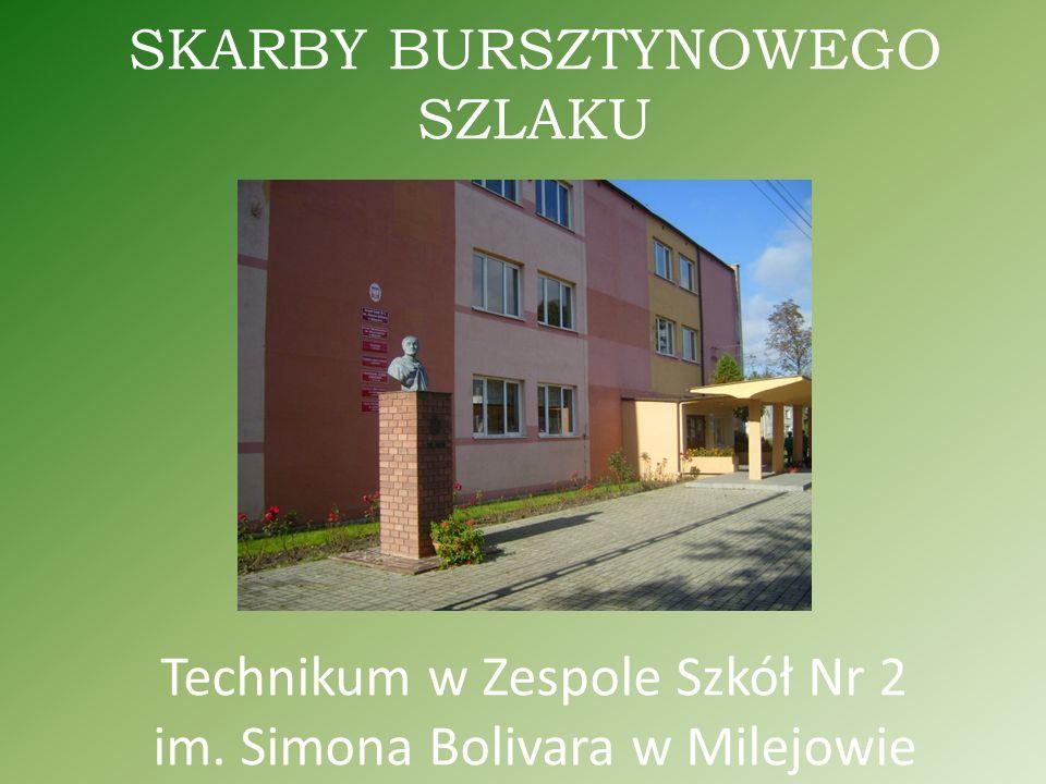 SKARBY BURSZTYNOWEGO SZLAKU Technikum w Zespole Szkół Nr 2 im