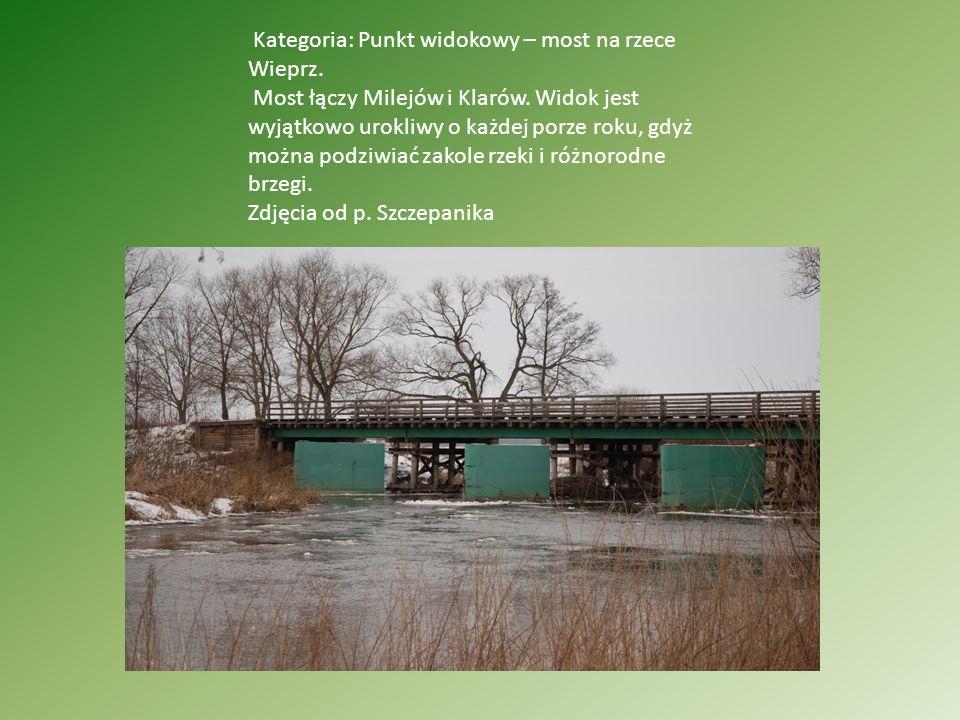 Kategoria: Punkt widokowy – most na rzece Wieprz.