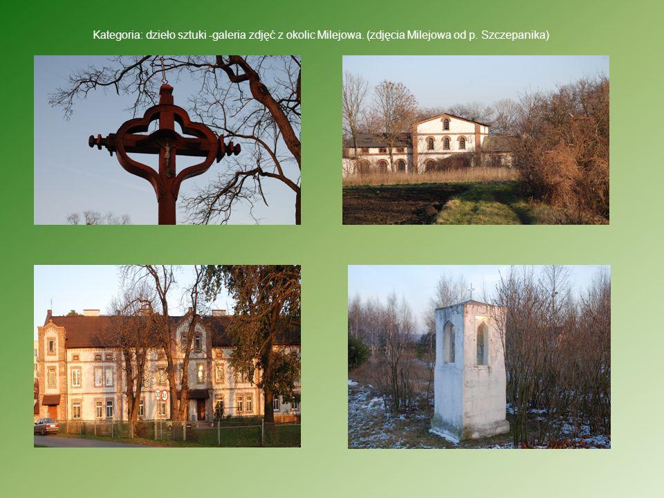 Kategoria: dzieło sztuki -galeria zdjęć z okolic Milejowa