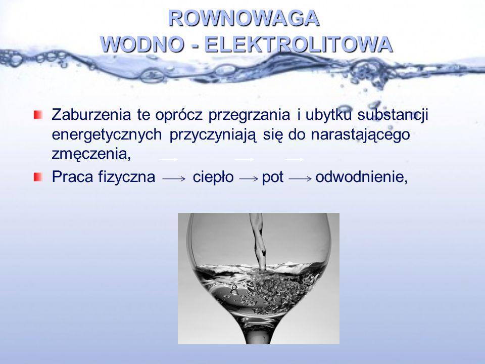 ROWNOWAGA WODNO - ELEKTROLITOWA