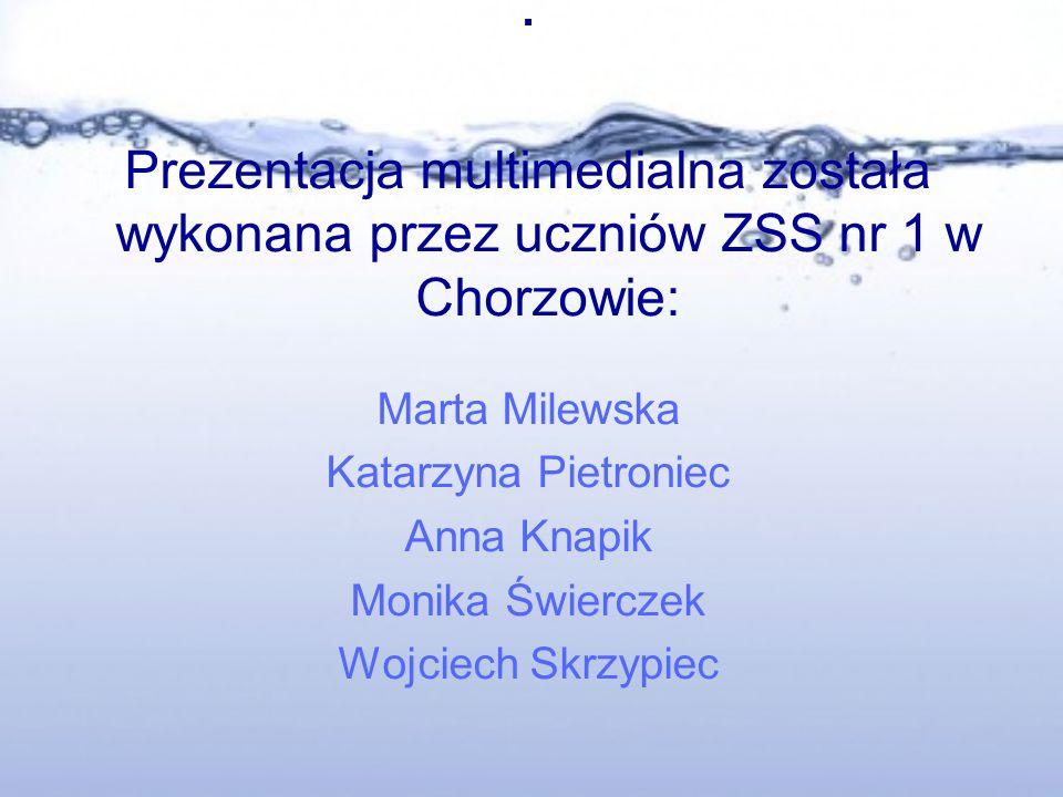 . Prezentacja multimedialna została wykonana przez uczniów ZSS nr 1 w Chorzowie: Marta Milewska. Katarzyna Pietroniec.