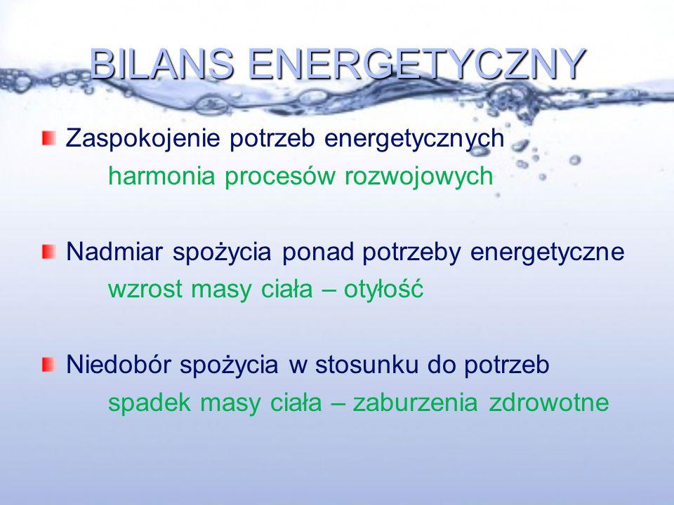 BILANS ENERGETYCZNY Zaspokojenie potrzeb energetycznych