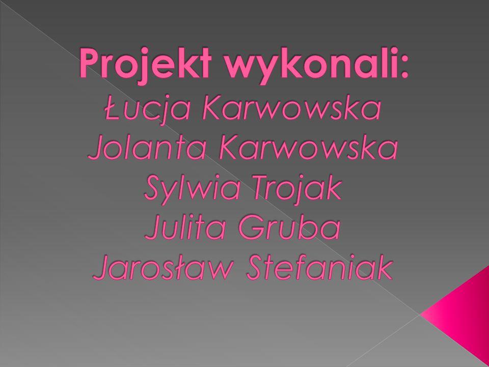 Projekt wykonali: Łucja Karwowska Jolanta Karwowska Sylwia Trojak Julita Gruba Jarosław Stefaniak
