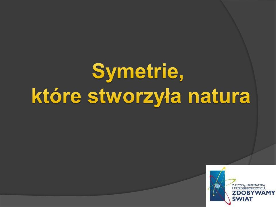 Symetrie, które stworzyła natura