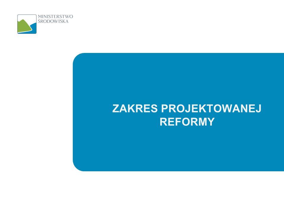 Zakres projektowanej reformy