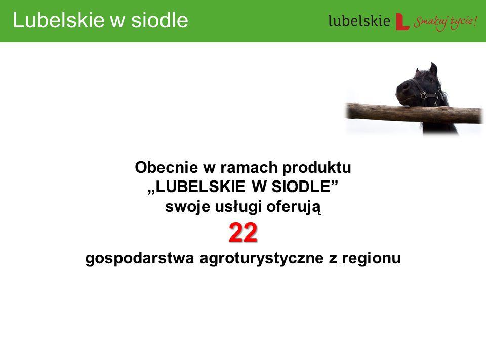 """Obecnie w ramach produktu """"LUBELSKIE W SIODLE swoje usługi oferują"""