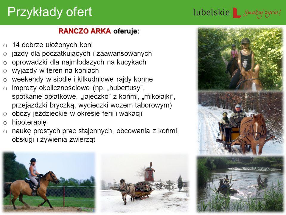 Przykłady ofert RANCZO ARKA oferuje: 14 dobrze ułożonych koni