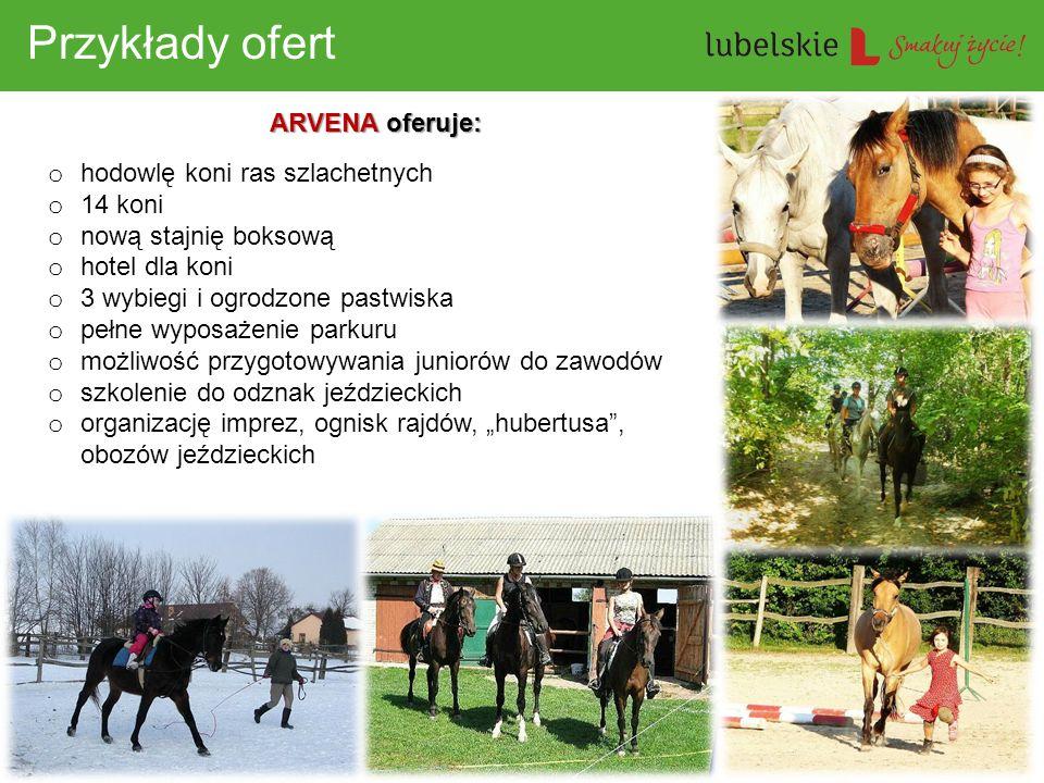 Przykłady ofert ARVENA oferuje: hodowlę koni ras szlachetnych 14 koni
