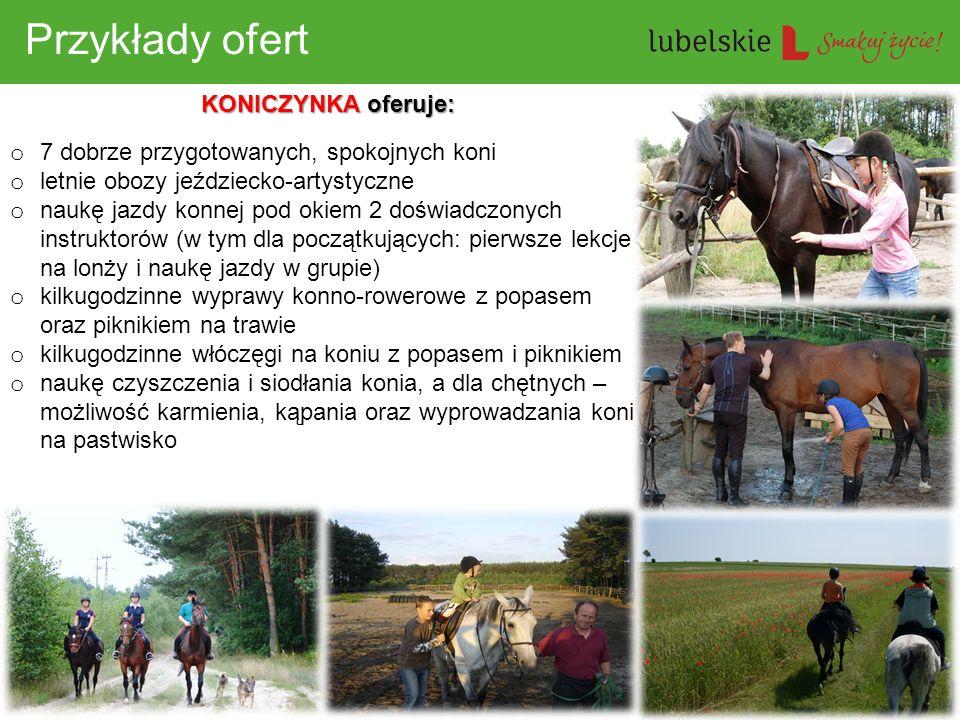 Przykłady ofert KONICZYNKA oferuje: