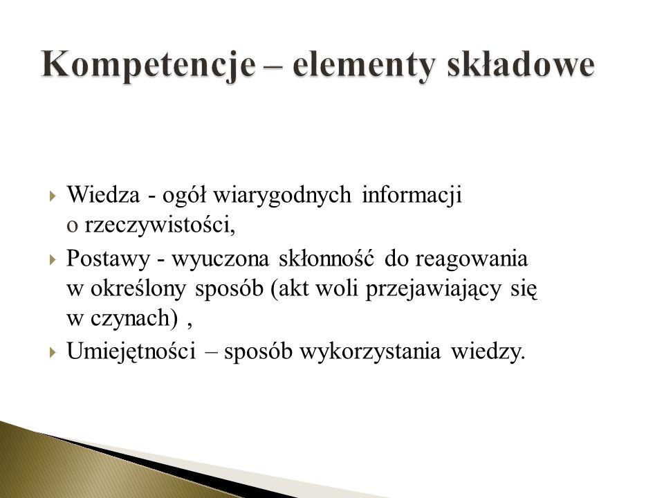 Kompetencje – elementy składowe