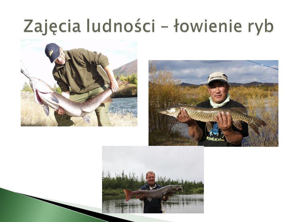 Zajęcia ludności – łowienie ryb