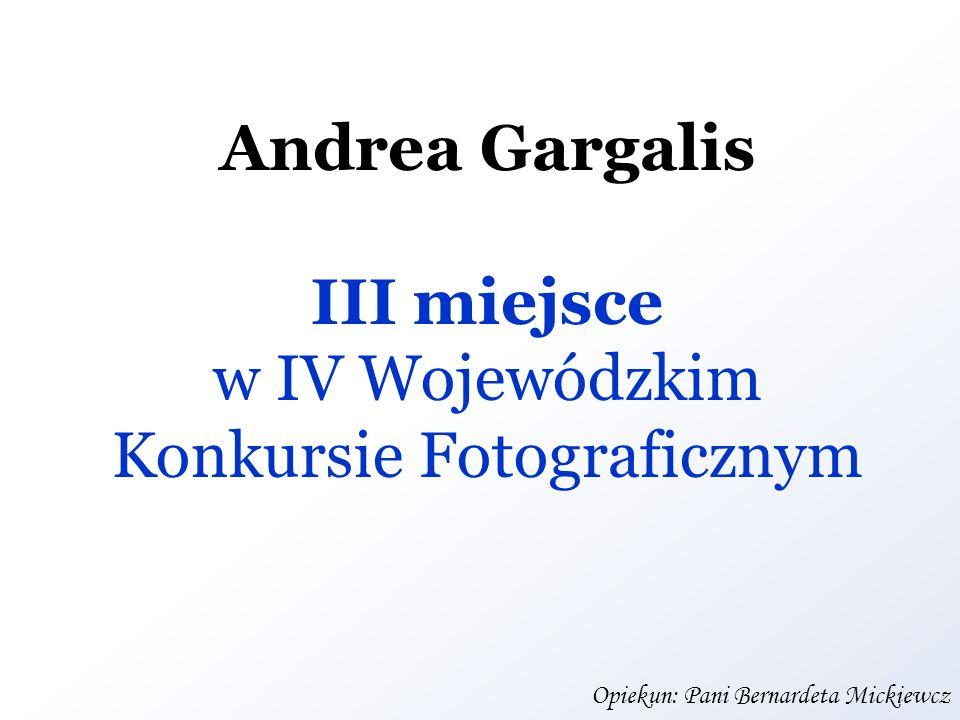 w IV Wojewódzkim Konkursie Fotograficznym
