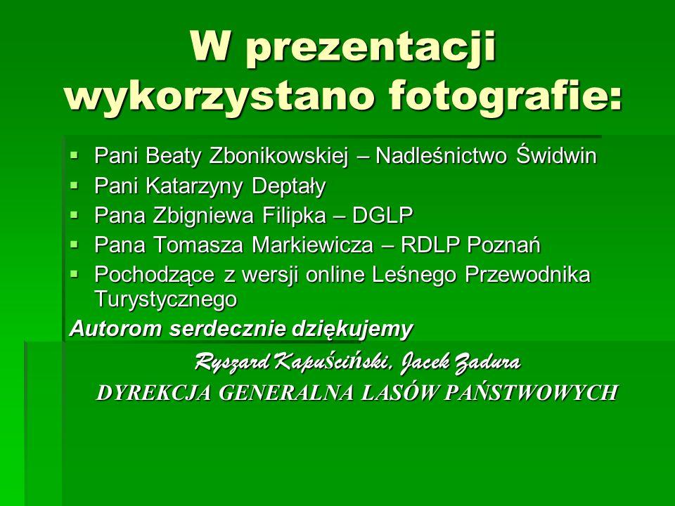 W prezentacji wykorzystano fotografie: