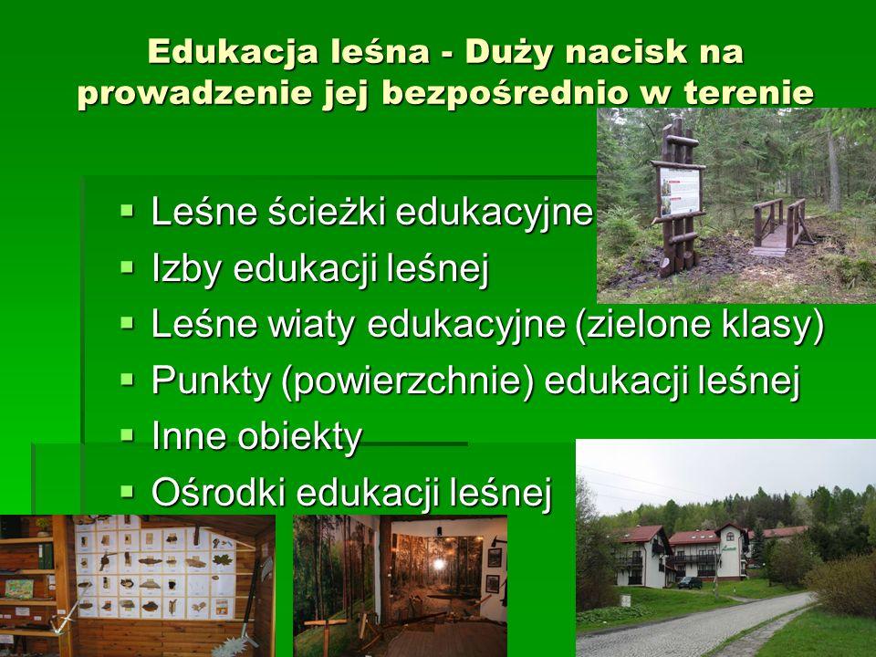 Edukacja leśna - Duży nacisk na prowadzenie jej bezpośrednio w terenie