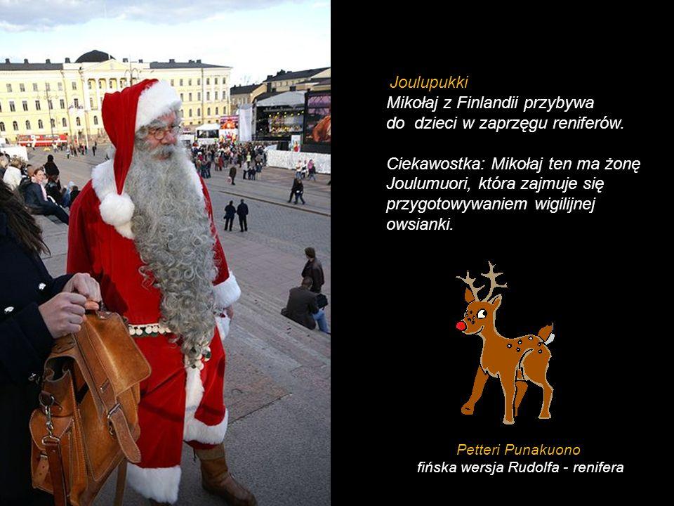 fińska wersja Rudolfa - renifera