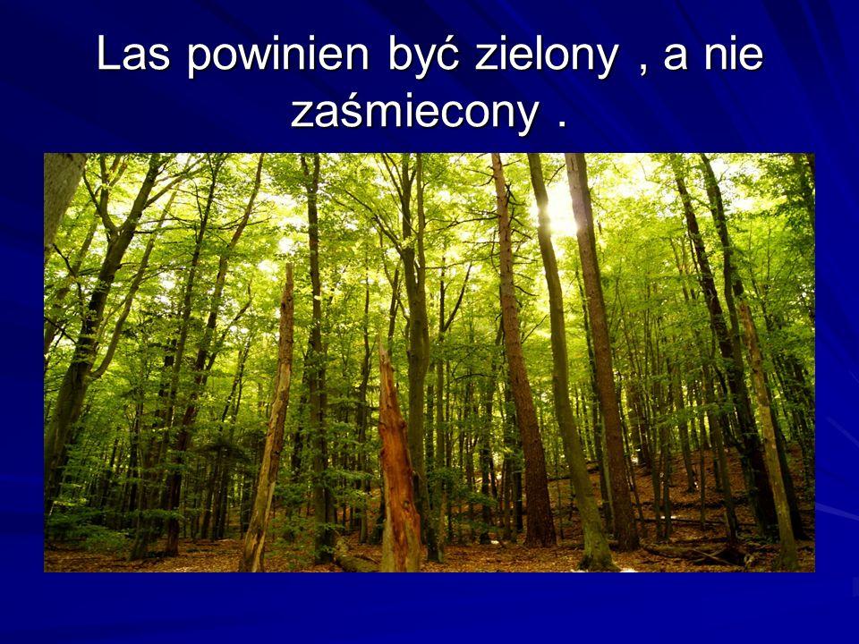 Las powinien być zielony , a nie zaśmiecony .