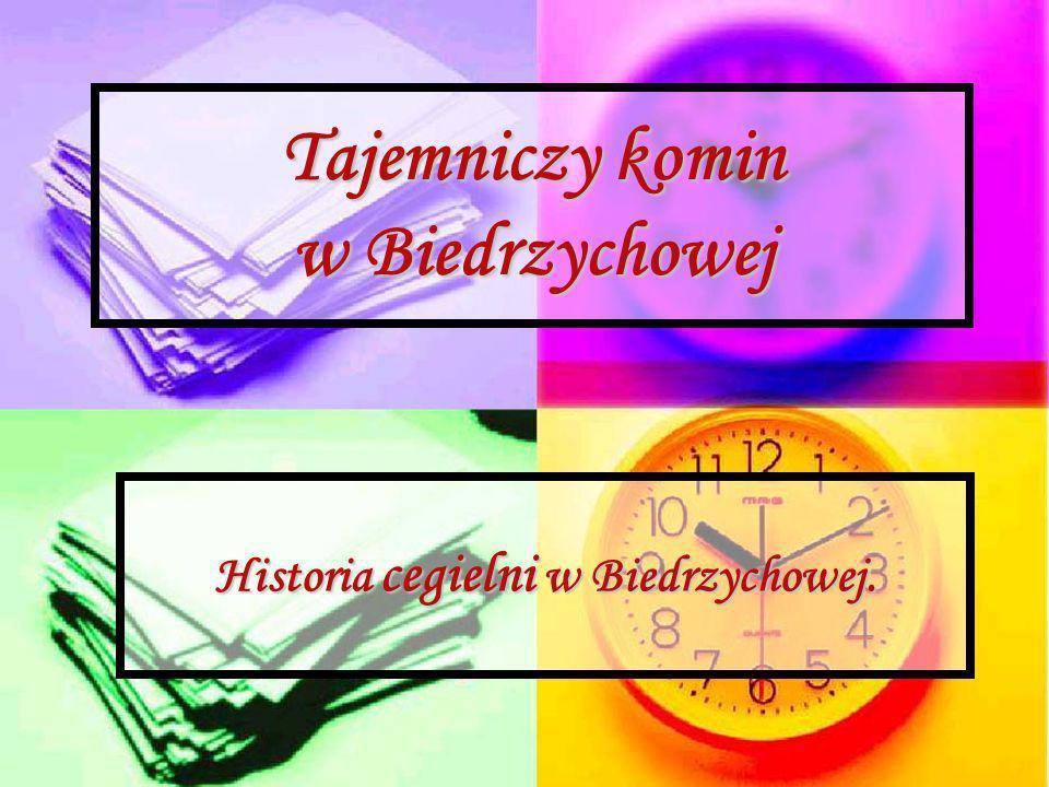 Tajemniczy komin w Biedrzychowej