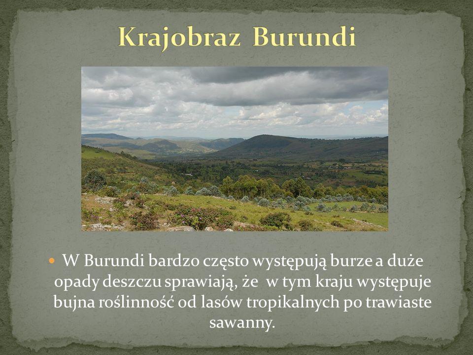 Krajobraz Burundi