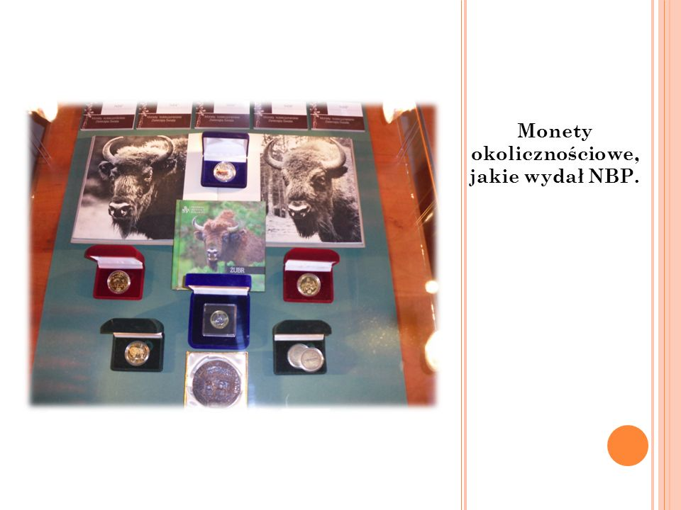 Monety okolicznościowe, jakie wydał NBP.