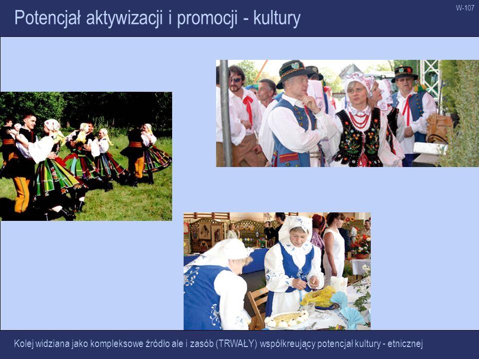 Potencjał aktywizacji i promocji - kultury