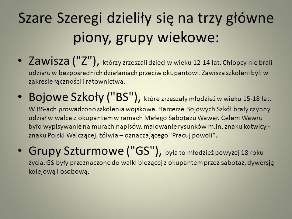Szare Szeregi dzieliły się na trzy główne piony, grupy wiekowe:
