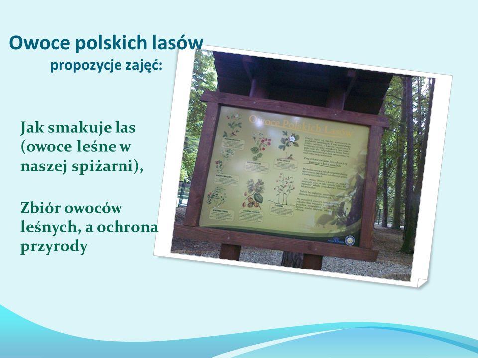Owoce polskich lasów propozycje zajęć:
