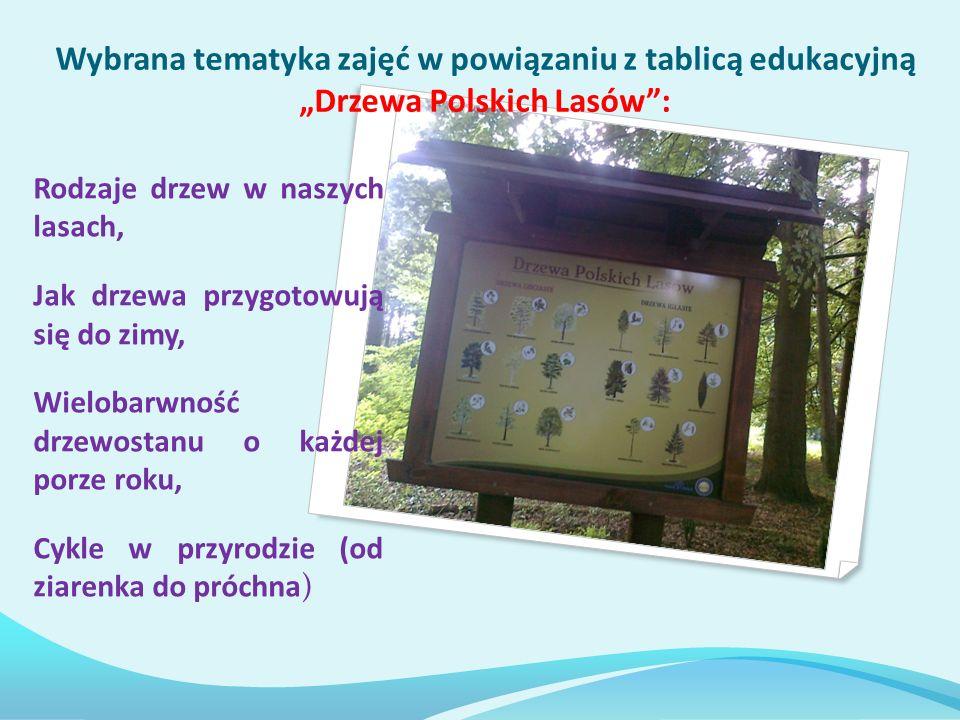 """Wybrana tematyka zajęć w powiązaniu z tablicą edukacyjną """"Drzewa Polskich Lasów :"""