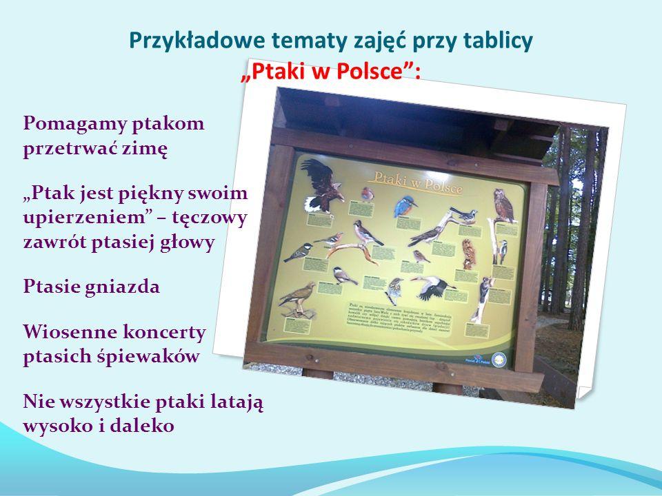 """Przykładowe tematy zajęć przy tablicy """"Ptaki w Polsce :"""