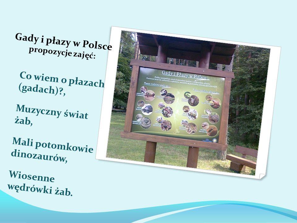 Gady i płazy w Polsce propozycje zajęć: