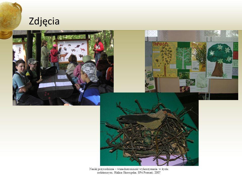ZdjęciaNauki przyrodnicze - wszechstronność wykorzystania w życiu codziennym, Halina Skorupska, SP4 Poznań, 2007.