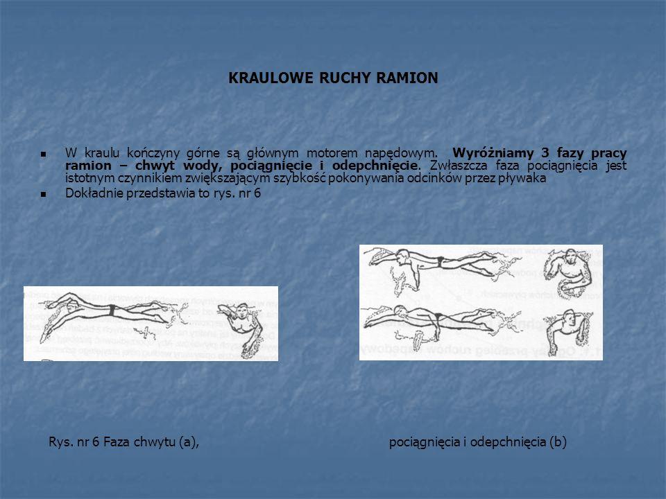 KRAULOWE RUCHY RAMION