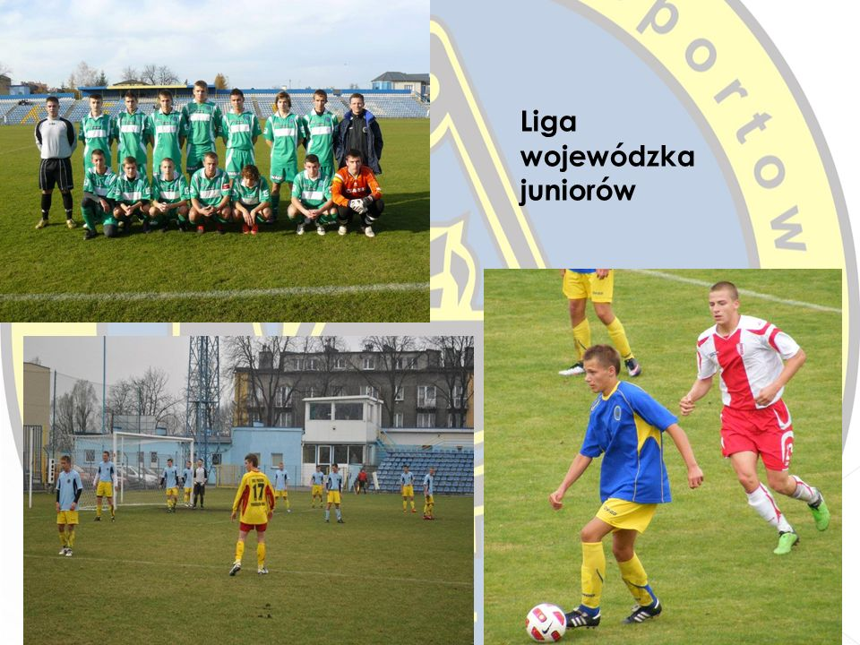 Liga wojewódzka juniorów
